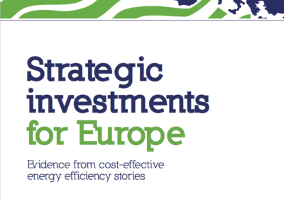 Strategic investments for Europe: Evidence from cost-effective energy efficiency stories