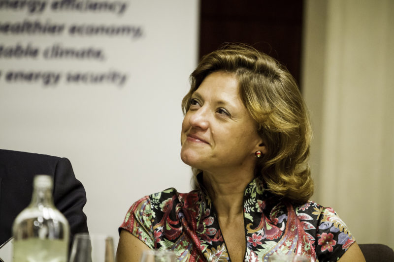 Monica Frassoni, President of EU-ASE, at the Second Annual EU-ASE Dinner, Brussels, 18 September 2012 (2)
