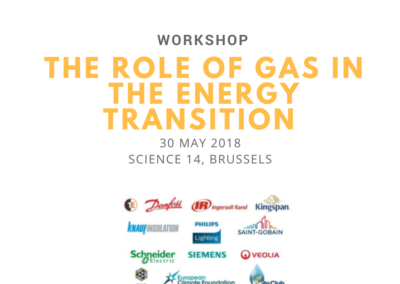 EU-ASE Workshop on energy efficiency, gas, and the energy transition
