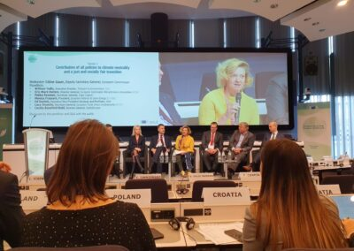 At Climate law conference Monica Frassoni highlights importance of energy efficiency to decarbonise Europe