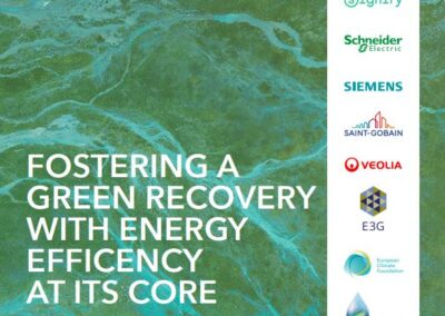 Fostering a green recovery with energy efficiency at its core – 2020 in review