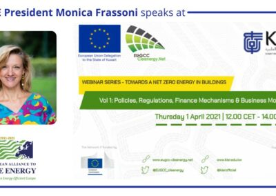 EU-ASE at EU-GCC Clean Energy Technology Network: Towards Net Zero Energy in Buildings.